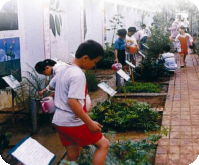 Plant life teaching material center in Zhuwan elementary school